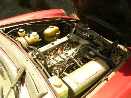 1981 Alfa Romeo Spider Veloce engine