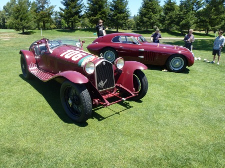 Alfa racers