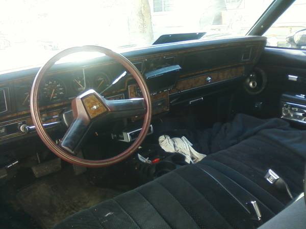 save the grandma cars 1980 chevrolet caprice classic coupe rusty but trusty. Black Bedroom Furniture Sets. Home Design Ideas