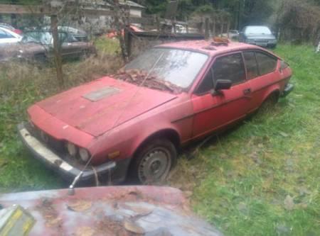 1981 Alfa Romeo GTV6 hoard sale