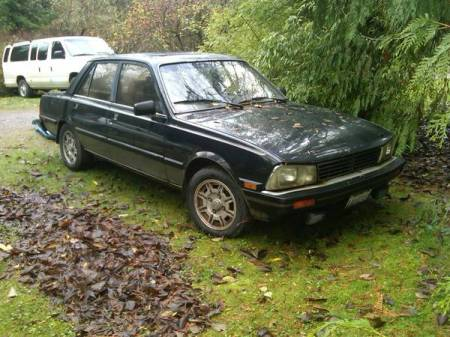1984 Peugeot 505 diesel right front