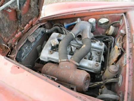 1964 Alfa Romeo Giulia SS engine